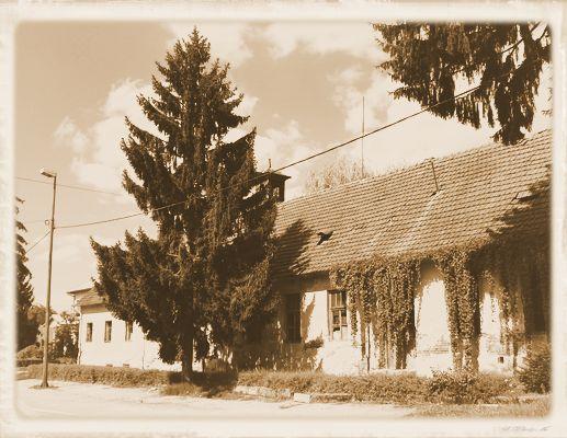Trnovitica - stara škola